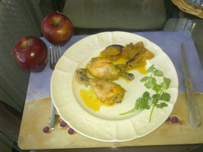 pollo de Pilar S.